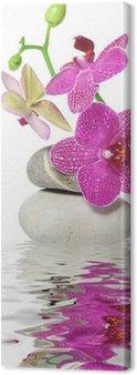 Canvas Print Ein Zweig Orchidee
