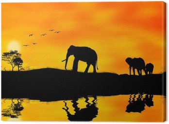 Elefanti africa Canvas Print