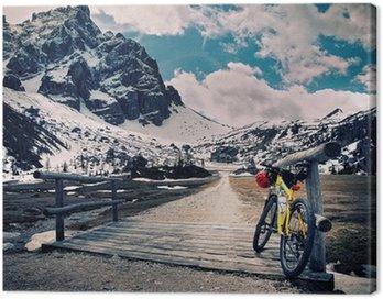 Escursione in montain bike