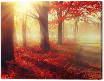 Fall scene. Beautiful autumnal park in sunlight