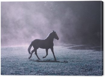 Fantasy morning sunlight meadow with brown horse and purple colored fog.