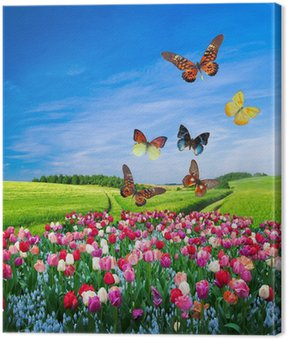 Canvas Print Field of colorful flowers and a butterfly group