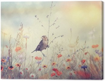Canvas Print Field with wild flowers and a bird