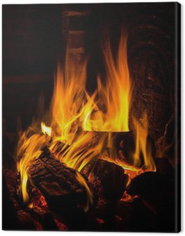 fire in a fireplace Canvas Print