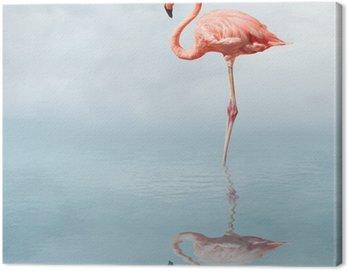 Canvas Print flamingo in pond