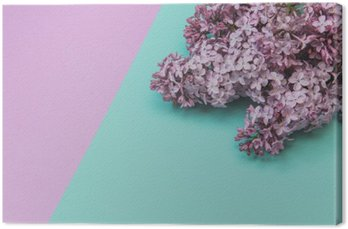 Flat lay stylish set: Lilac flowers on pastel background. Top view.