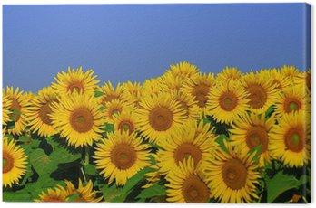 Canvas Print fleurs d'été