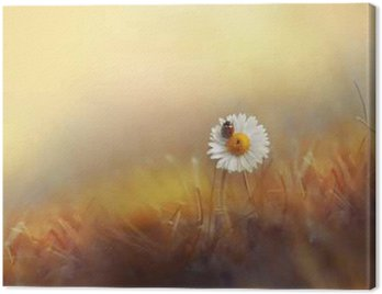 Canvas Print Flower daisies chamomile with ladybug in the grass on gold background summer sun at sunset in the rays of light. Beautiful elegant romantic artistic image. Wallpaper desktop, design greeting cards.