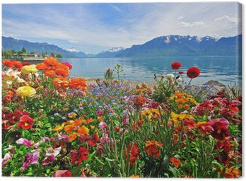 Canvas Print Flowers in swiss Alps