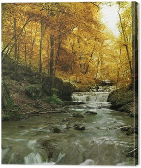 Canvas Print forest waterfall