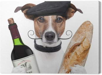french dog wine baguette beret