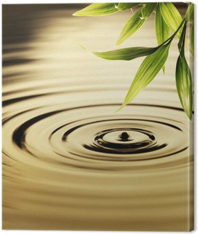 Canvas Print Fresh bamboo leaves over water