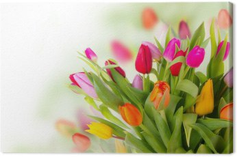 Fresh tulips bouquet