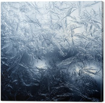 Frosty fine pattern of nature Canvas Print