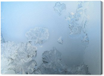 Frosty pattern at a winter window glass Canvas Print