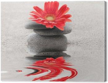 Canvas Print Galets et gerbera reflet zen
