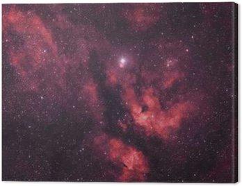 Gasnebel um den Stern Sadr im Sternbild Schwan
