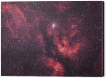 Canvas Print Gasnebel um den Stern Sadr im Sternbild Schwan