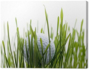 Canvas Print Golf