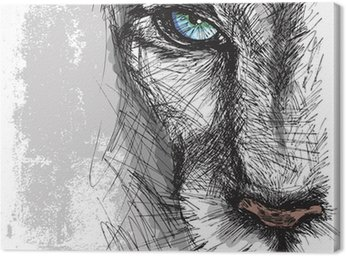 Hand drawn Sketch of a lion looking intently at the camera Canvas Print