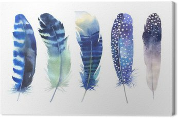 Hand drawn watercolor feather set. Boho style. Watercolour illustration