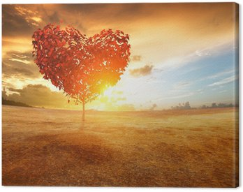 heart tree in the field Canvas Print
