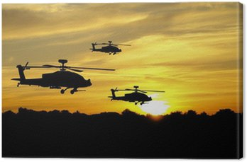 Canvas Print Helicopter silhouettes on sunset background