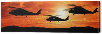 Canvas Print Helicopters