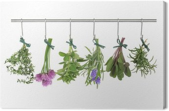 Canvas Print Herbs Hanging and Drying