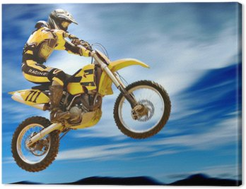 Canvas Print high flyer
