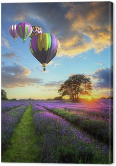 Hot air balloons flying over lavender landscape sunset Canvas Print