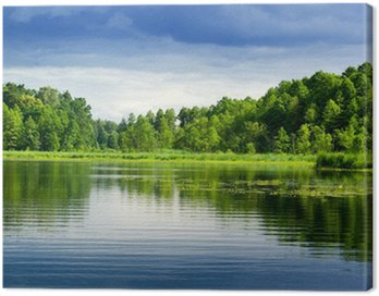 Lake and forest. Canvas Print
