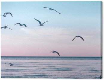 Canvas Print Large group flock of seagulls on sea lake water and flying in sky on summer sunset, toned with instagram retro hipster filters, film effect