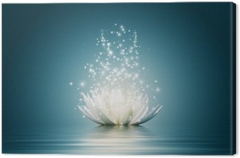 Canvas Print Lotus flower
