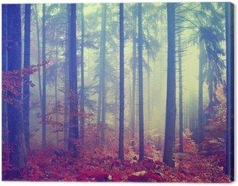 Magic color vintage forest Canvas Print
