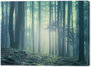Canvas Print Magical blue green saturated foggy forest trees landscape. Color filter effect used. Picture was taken in south east Slovenia, Europe.