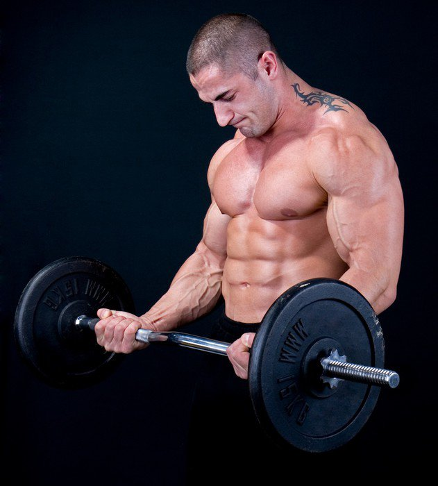 Man with a bar weights in hands training Canvas Print -