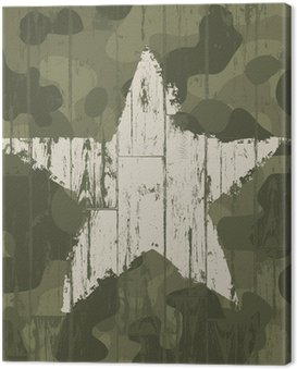 Canvas Print Military camouflage background with star. Vector, EPS10.