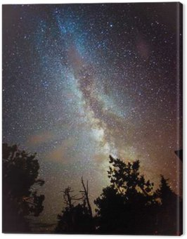 Milky Way Rising over California Canvas Print