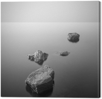 Canvas Print Minimalist misty landscape. Black and white.