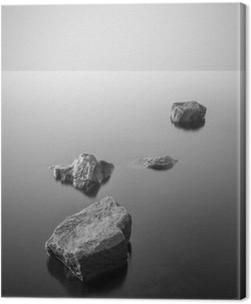 Minimalist misty landscape. Black and white. Canvas Print
