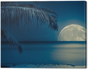 Moon reflected on the water of a tropical beach Canvas Print