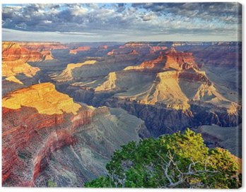 Canvas Print morning light at Grand Canyon