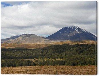 Canvas Print Mount Ngauruhoe