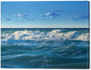 ocean coast with waves Canvas Print