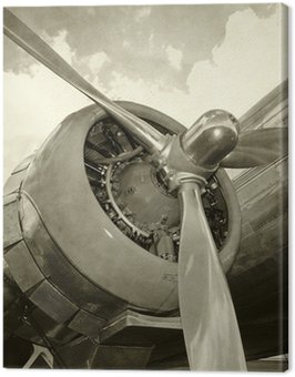 Old engine and propeller