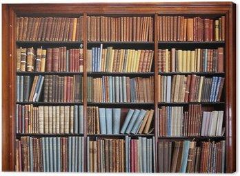 Canvas Print old library bookshelf
