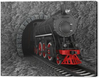 Canvas Print Old locomotive in tunnel