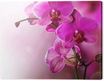 Canvas Print Orchid Flower border design