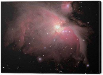 Canvas Print orion nebula m42